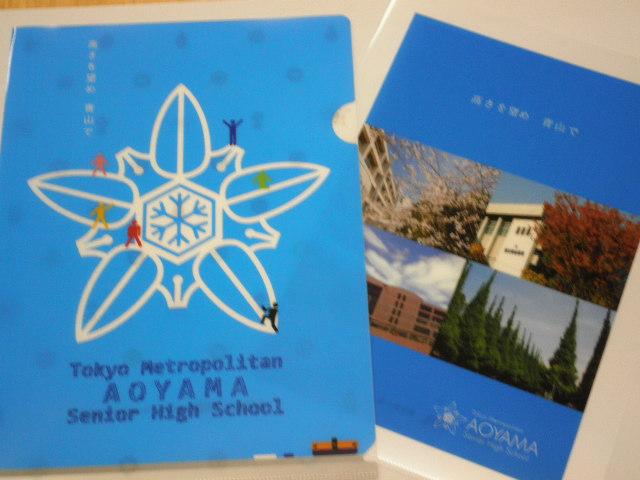 aoyama_2013_01